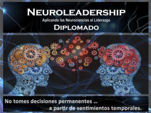 www.diplomadoneuroliderazgo.com